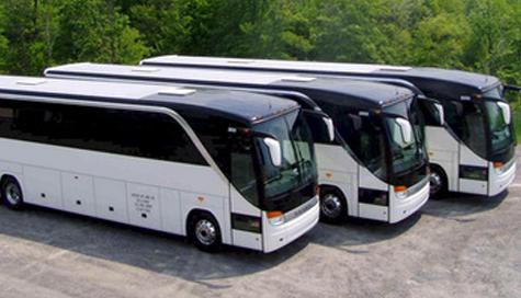 examinare manageri transporturi